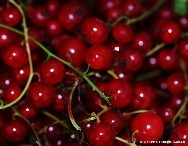 The superfoods that are helping people live longer and happier lives – Part Two