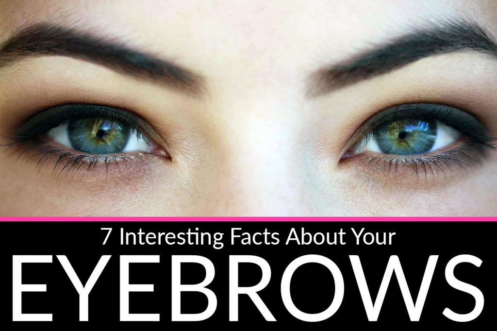 Interesting Eyebrow Facts