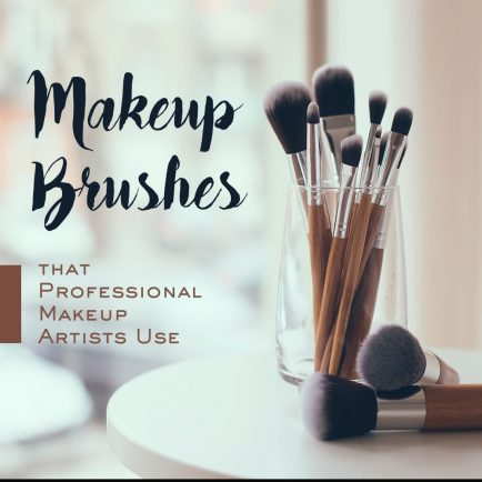 Makeup Brushes Used by Professionals