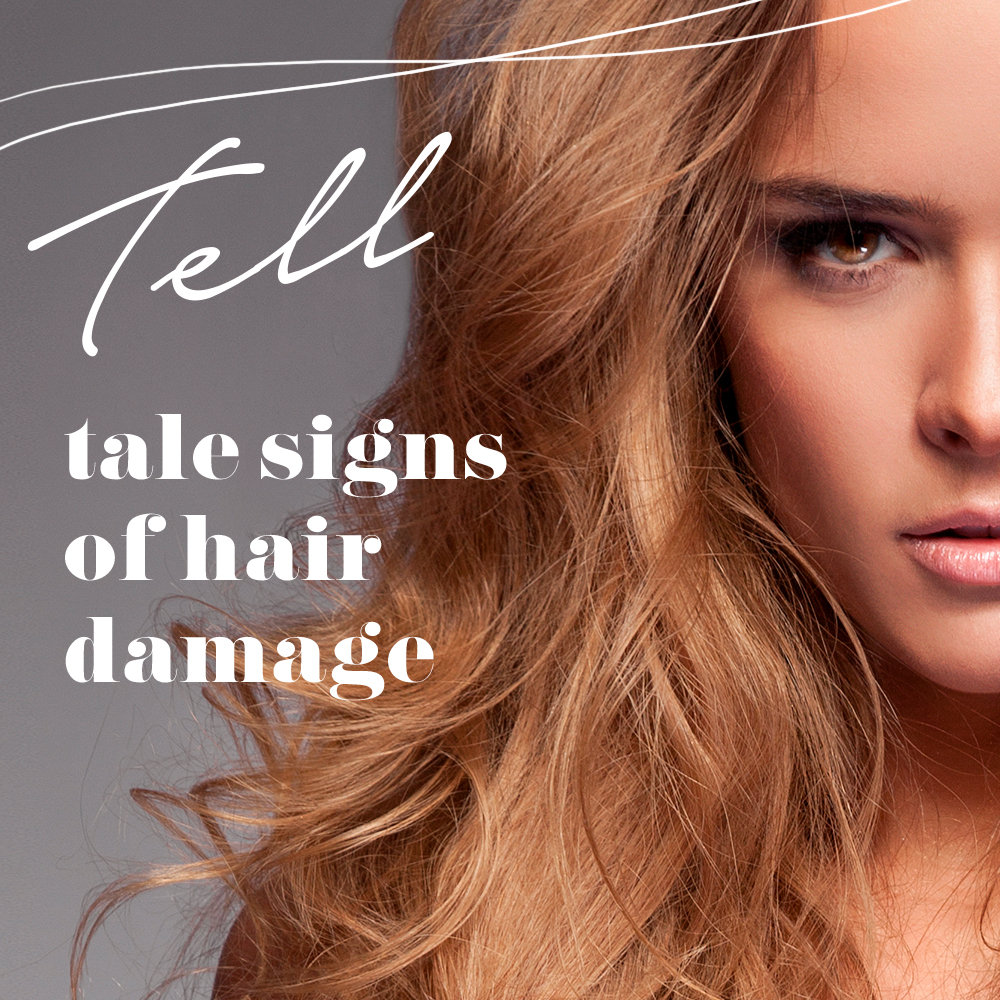 The Tell-Tale Signs of Hair Damage | Alyaka