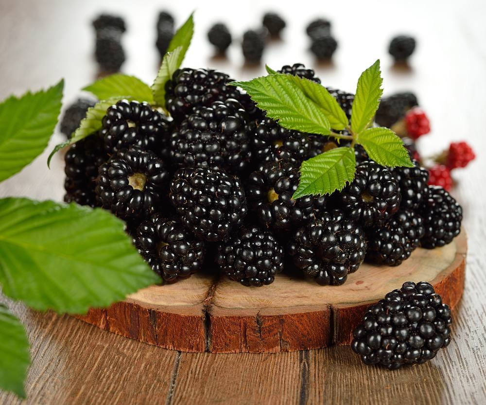#Fruit #blackberries #enjoy #organic #happiness #alyakaofficial #love #vitaminc #greenbeauty