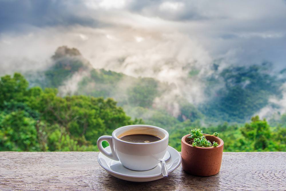 Good Morning! Happy Friday! #Morning #coffee  #coffeetime #cactus #mountain #happyweekend #landscape  #naturelovers #nature #alyakaofficial