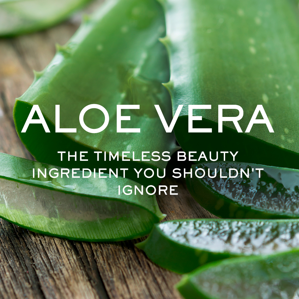 Aloe Vera: The Timeless Beauty Ingredient You Shouldn't Ignore