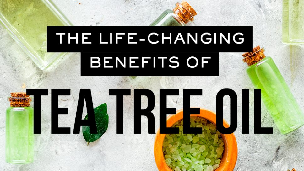 Life Changing Benefits of Tea Tree Oil